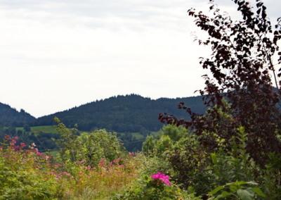 Bergblick in Maierhöfen